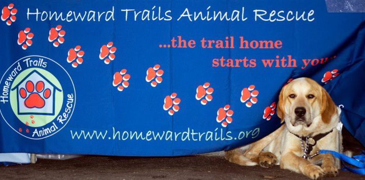 About Homeward Trails Animal Rescue Pet Adoption In Va Dc Md