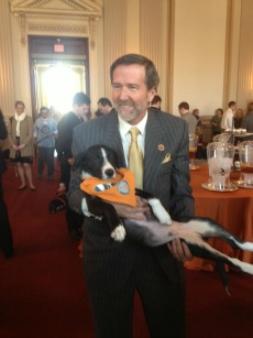 "Congressman John Campbell has a ball with HT rescued pup Ames at the ASPCA's annual ""Paws for Love"" adoption event, held on Capitol Hill on February 14, 2013"