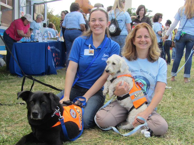 HT volunteers and rescued pooches enjoy the National Family Pack Walk event