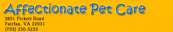 Affectionate pet care logo 2