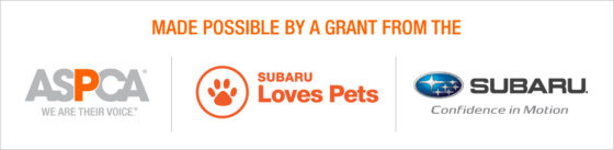 subaru loves pets special adoption event october 12 at brown s manassas subaru homeward trails animal rescue pet adoption in va dc md subaru loves pets special adoption